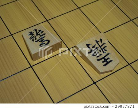 Shogi 29957871