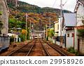 arashiyama,autumn,city 29958926