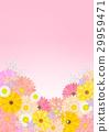 花朵 花 花卉 29959471