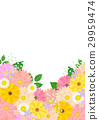 花朵 花 花卉 29959474