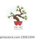 Vector illustration of Bonsai Tree . 29961094