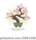Vector illustration of Bonsai Tree . 29961096