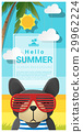 Hello summer background with dog wearing glasses 29962224