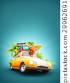 summer travel illustration 29962691