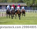 Race horses and jockeys during a race 29964805