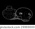White mushrooms on black background 29969000