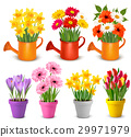 Spring and summer colorful flowers in pots  Vector 29971979