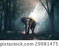 Elephants in the forest 29981475