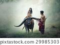 Couple farmer in farmer suit with buffalo on field 29985303