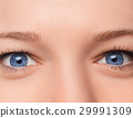 Closeup shot of woman eye with day makeup 29991309