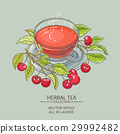 cherry illustration vector 29992482