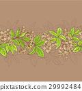 elderflower, pattern, vector 29992484