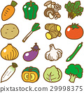 vegetables, vegetable, vector 29998375