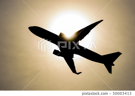 Airplane in the sun 30003413