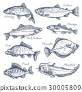 Sea fish sketch vector isolated icons 30005809