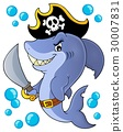Pirate shark topic image 1 30007831