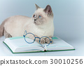 clever cat with glasses, lying on the book 30010256