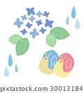 繡球花和蝸牛 30013184
