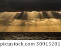 Light curtain 30013201