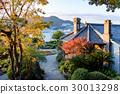 秋葉的礫石花園 30013298