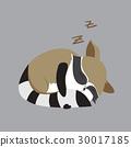 동물, 밑그림, 귀엽다 30017185