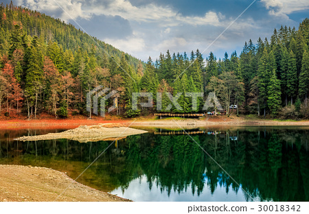 pier on mountain Lake in Synevir National Park 30018342