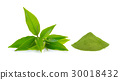 powder green tea and green tea leaf  on white 30018432