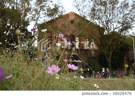 National Taiwan University 30026476