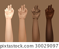 手指 向量 向量圖 30029097