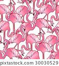 粉色 火烈鸟 图形 30030529