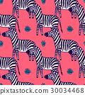 zebra, animal, vector 30034468