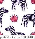 zebra, animal, vector 30034483