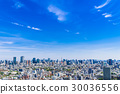 Blue Sky and Tokyo City View 30036556