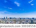 藍天和東京城市景觀 30036556