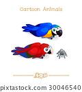 鸚鵡 金剛鸚鵡 鳥兒 30046540