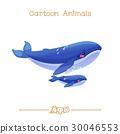 鲸鱼 动物 海 30046553