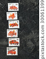 postage stamps  30061399