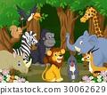 动物 卡通 大象 30062629