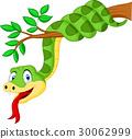 Cartoon green snake on branch 30062999