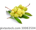 star gooseberry with leaves isolated on white 30063504