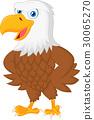 Cute eagle cartoon posing 30065270