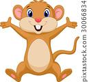 鼠標 老鼠 動物 30066834
