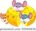 Cartoon mouse hiding inside cheddar cheese 30066836