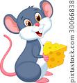 鼠標 老鼠 動物 30066838