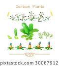 一組 卡通 植物 30067912