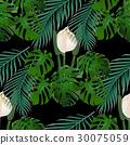 exotic jungle leaf 30075059