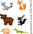 Wild animal cartoon 30078633