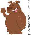 bear cartoon animal 30079382