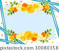 バラ黄色系 05 30080358