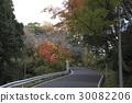 千葉縣 江戶時代 建於山地與平地間的城堡 30082206